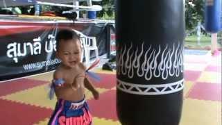 Muay Thai Baby! Kaen Sumalee (1 year old)