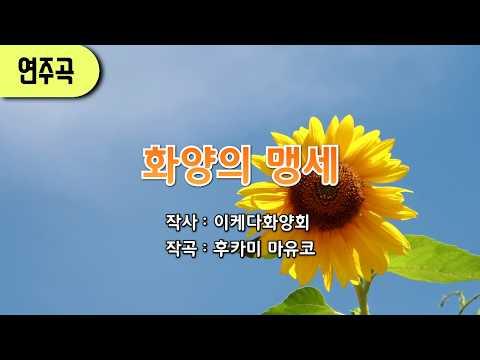 [학회가] 화양의 맹세 (연주) //SGI