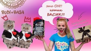 Котик Басик - мягкая игрушка российской компании Буди Баса, распаковка и обзор