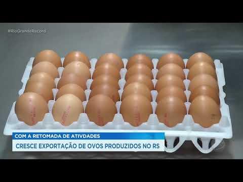 Com a retomada de atividades cresce exportação de ovos produzidos no RS
