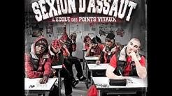 06 - Itinéraire d'un chômeur - Sexion d'Assaut  [Album - L'Ecole des points vitaux]