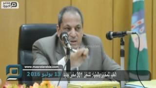 مصر العربية | العليا للمخابز بالمنيا: تشغيل 301 مخبز جديد