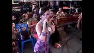 EDAN TURUN Koplo Dangdut Live  2015 PRIMAVERRA vs TEMON HOLIC
