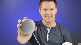 Google Home Mini Live Q&A