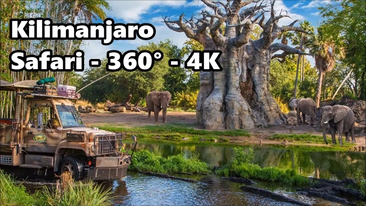 Image of: Tripadvisor 360 4k Kilimanjaro Safari Full Ride Disneys Animal Kingdom Youtube 360 4k Kilimanjaro Safari Full Ride Disneys Animal Kingdom