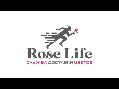 Кустовая хризантема ЗЕМБЛА / ZEMBLA. Интернет магазин цветов Rose Life Цветы поштучно