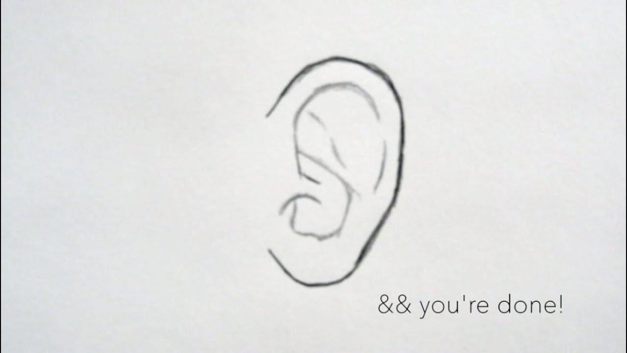 How To Draw Ears For Beginners D Youtube