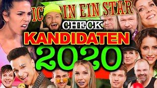 """Der beste cast seit ever! das #dschungelcamp ist wieder da! werden elena miras, daniela büchner & co """"ich bin ein star - holt mich hier raus"""" (rtl) 2020 ret..."""