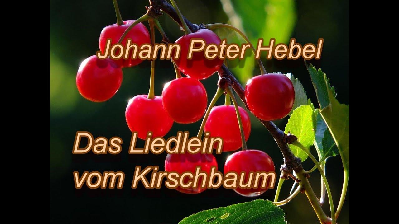 kirschbaum gedicht