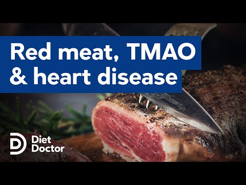 TMAO And Heart Disease, Cause For Concern For Meat Eaters?