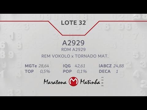 LOTE 32  Maratona Matinha