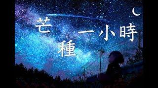 Download lagu 音闕詩聽 - 芒種【一小時循環】【動態MV歌詞Lyrics】