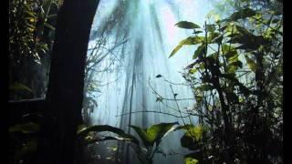 Charles Koechlin: Le Livre de la Jungle - I. Trois Poèmes, Op.18  (1899-1901) 1/2