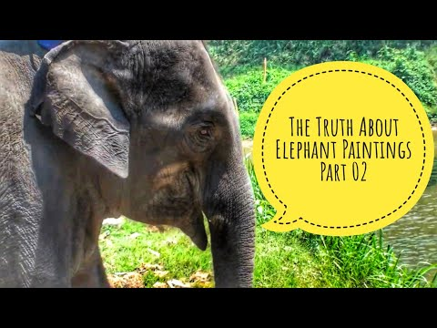 The Truth About Elephant Paintings Part 2