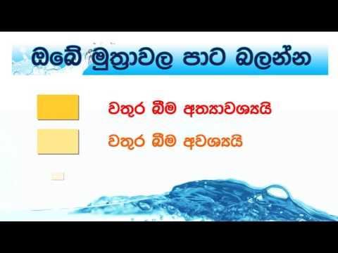 Health Education Bureau,Srilanka, Urin Animation 35sec