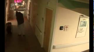 Minnesota Hospital Patient Attacks Nurses