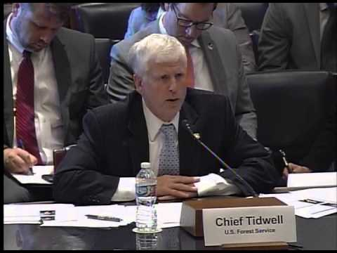 Subcommittee reviews the National Forest System