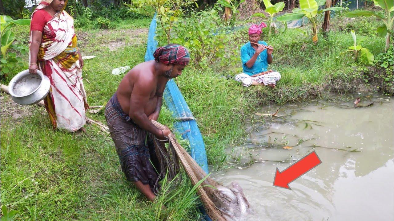 Catching Big Catfish By Cast Net Fishing - Fish Catching By Beautiful Village Aunty
