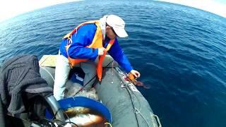 Рыбалка 2017 .о.Сахалин.