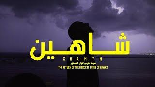 SHAHYN - THE RETURN OF THE FIERCEST TYPES OF HAWKS | شاهين - عودة اشرس انواع الصقور