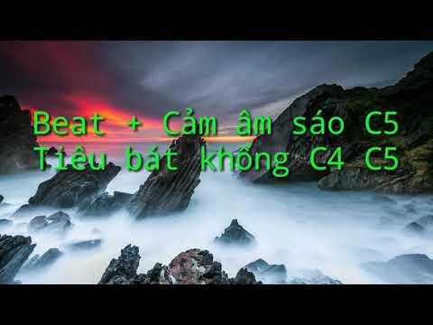 Beat + cảm âm tuý Hồng Nhan C5