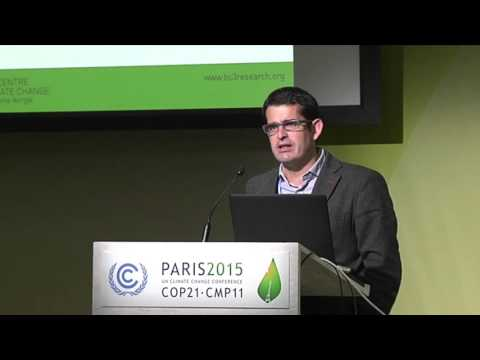 The Role of Regional Governments in Climate Change Policy