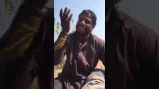 FUNNY ENGLISH BY PAKISTANI FARMER