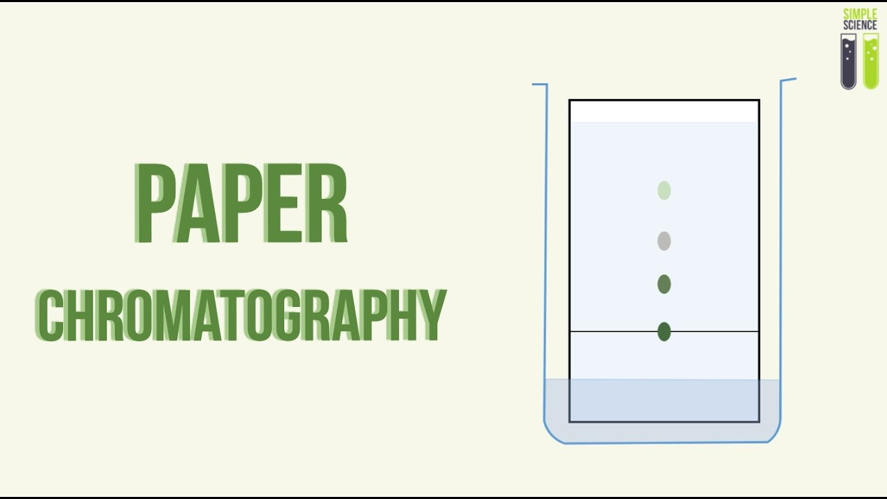 igcse chemistry revision part 22 paper chromatography