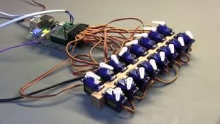 AB Electronics Servo Pi demo with 16 servos