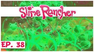 slime rancher ep 38 herd of mutant green slime cats slime rancher gameplay