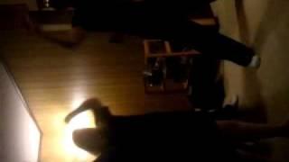 video-2011-02-16-20-04-53