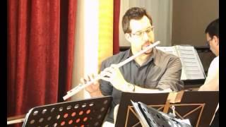 Madredeus - O Pastor Instrumental (Vox Cantus Cover)