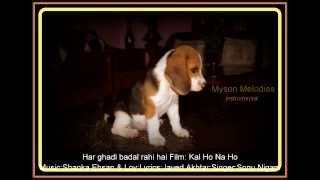 har ghadi badal rahi hai-instrumental ; Film:Kal ho na ho