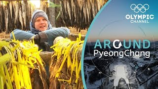 When Things Smell Fishy in PyeongChang it's... | Around PyeongChang