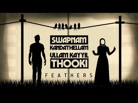 Swapnam Kandathalam Malayalam Whatsapp Status Video   Shadow Drama   Feathers