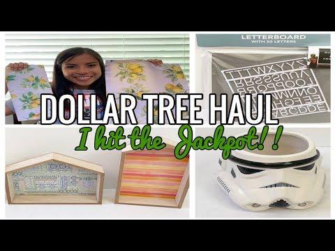 DOLLAR TREE HAUL|JUNE 2019|I HIT THE JACKPOT!!