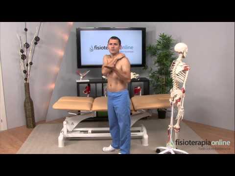 Tratamiento para la tendinitis del hombro y el manguito rotador - Fisioterapia Bilbao