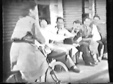 linne 1957 / verder deel 2