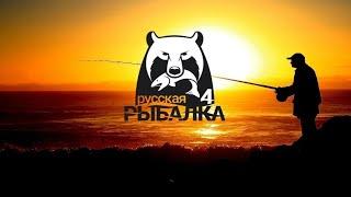 Русская рыбалка 4 фармим серу В поисках трофейного сома
