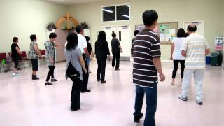 Disco ~ Cindi Talbot ~ Line Dance (Dance & walk thru)