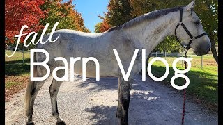 FALL BARN VLOG!