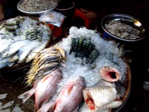 Chinatown Market in Yangon Myanmar Burma Seafood Fish Crabs Prawns - Phil in Bangkok