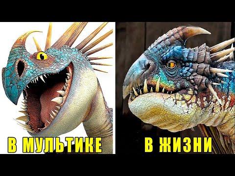 «Как приручить дракона» В РЕАЛЬНОЙ ЖИЗНИ!!!!