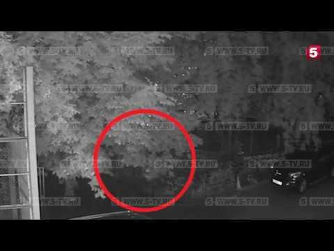 Нападение на директора Фонда кино Вячеслава Тельнова в Москве реальная съемка момента