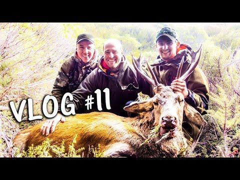 Hirschfieber | HUNTING VLOG 11 - JAGD TOTAL