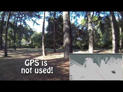 Autonomous navigation of quadrotor UAV in a forest without GPS.