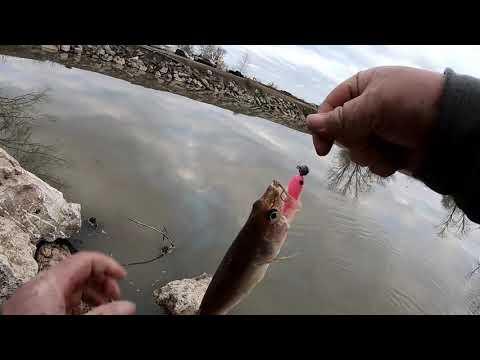 Saugeye Fishing Buckeye Lake Ohio