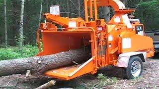 Alat Berat Pemotong Pohon Kayu Raksasa dI DUNIA
