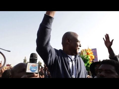 Ethiopia frees prominent opposition leader