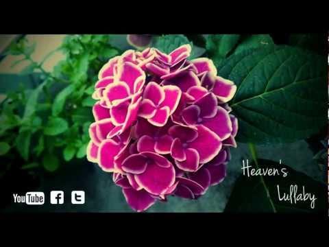 Heaven's Lullaby (Beautiful Piano Song)